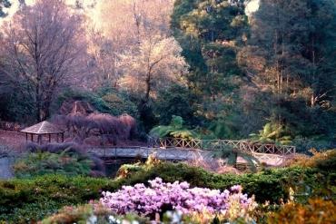 7 khu vườn xuân đẹp nhất Melbourne, Australia